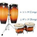 打楽器の種類や特徴について簡単に紹介(画像付き)