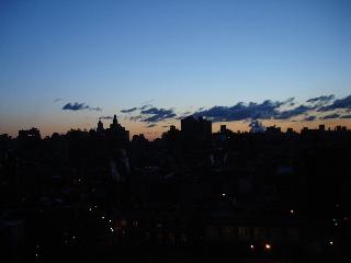 New York Morning Glory