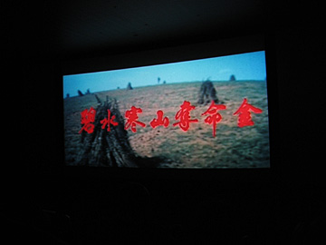 The Enigmatic Case (Bi shui han shan duo ming jin) van Johnnie To