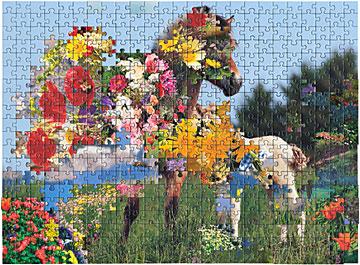 rogowski_puzzle10_500_artworkimage_1