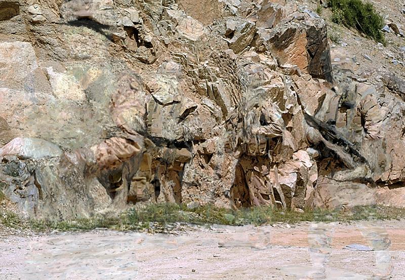 celinevandenboorn