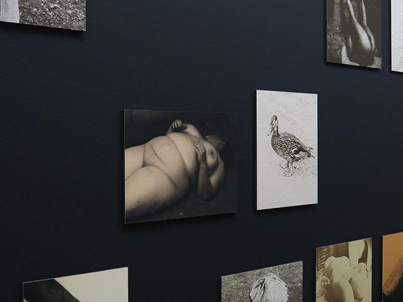 IMG_3765_2014 Studio Johan Nieuwenhuize