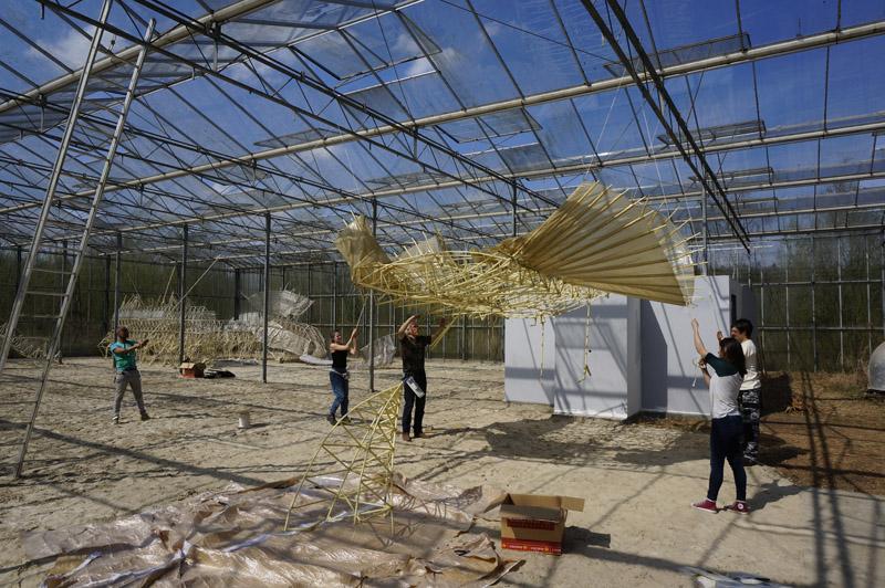 1. Bewogen Beweging (Theo Jansen, Zoro Feigl), Verbeke Foundation
