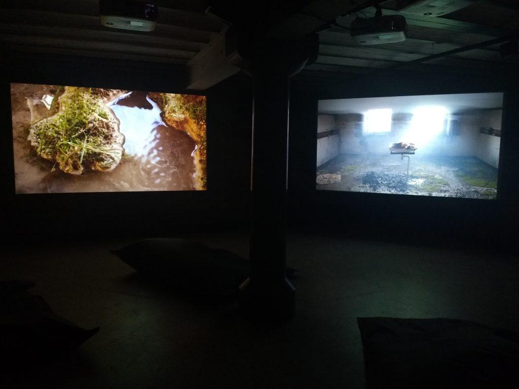 Sjoerd Knibbeler - Within Reach @ Collectie de Groen