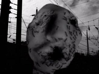 David Lynch, Ant Head