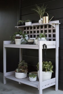 Beautiful Plant Decors For Your House 16