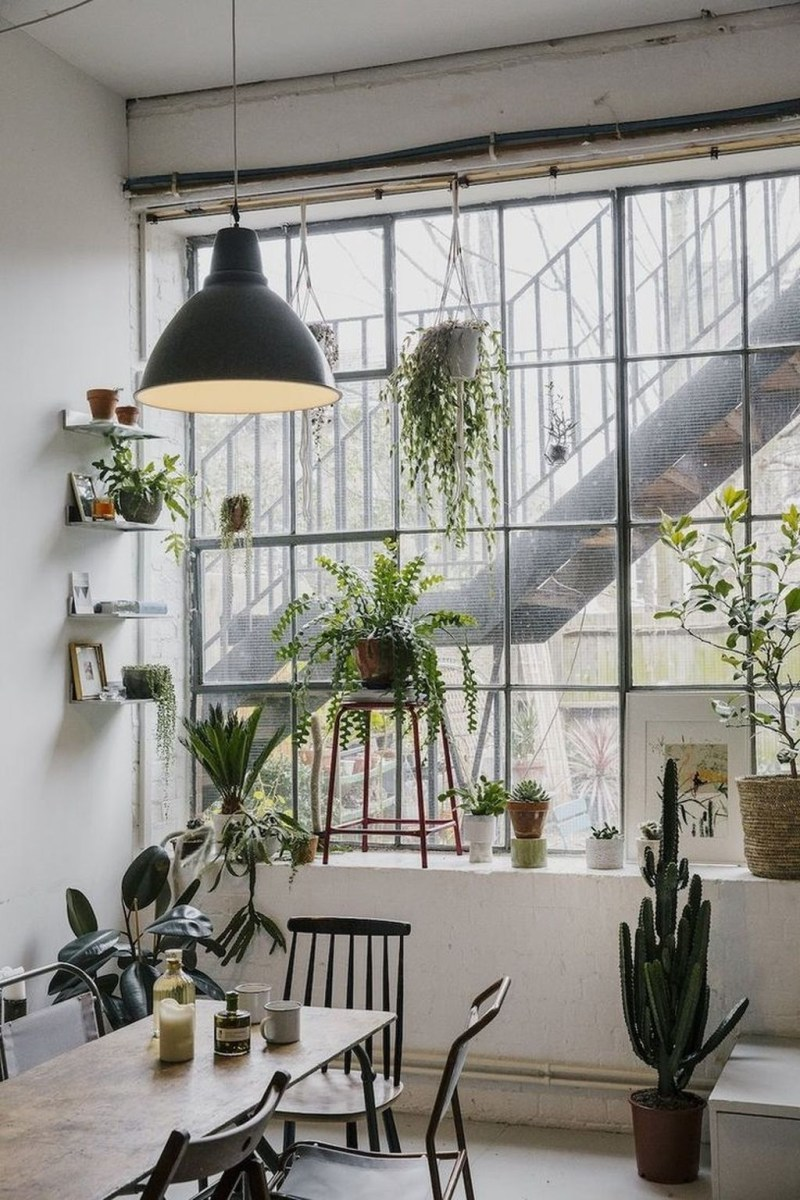 Beautiful Plant Decors For Your House 25