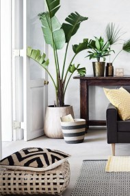 Beautiful Plant Decors For Your House 39