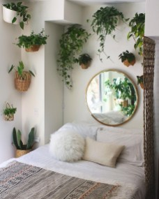 Beautiful Plant Decors For Your House 41