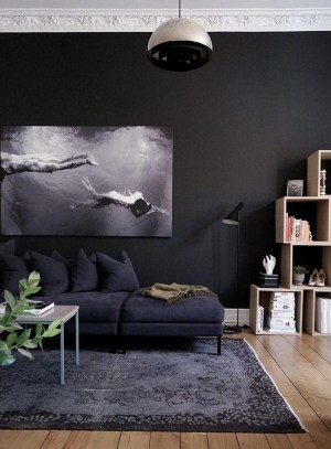 Best Living Room Ideas With Black Walls 07
