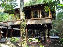 A Wooden House That's Simple On The Outside But Modern On The Inside 06