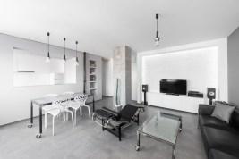 Minimalist Industrial Apartment 03