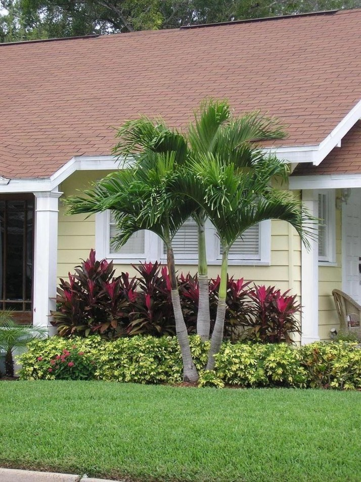 Cute Palm Gardening Ideas For Front Yard 01