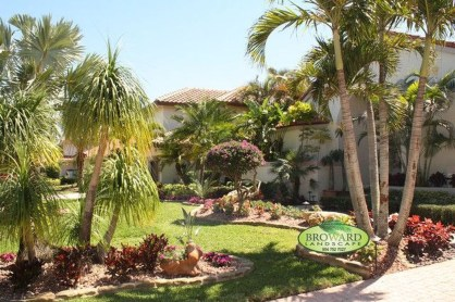 Cute Palm Gardening Ideas For Front Yard 04