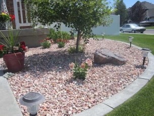 Cute Palm Gardening Ideas For Front Yard 11