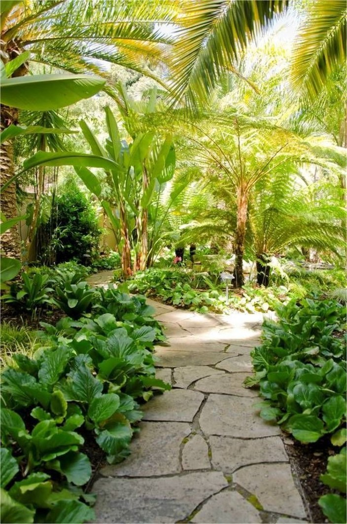 Cute Palm Gardening Ideas For Front Yard 19