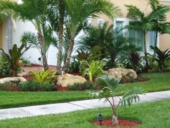 Cute Palm Gardening Ideas For Front Yard 43