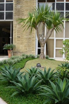 Cute Palm Gardening Ideas For Front Yard 50
