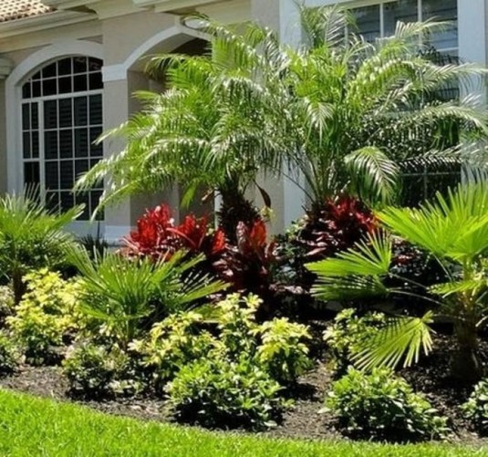 Cute Palm Gardening Ideas For Front Yard 52