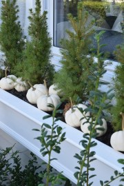 Incredible Autumn Decorating Ideas For Backyard 05