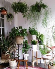 Magnificient Indoor Decorative Ideas With Plants 49