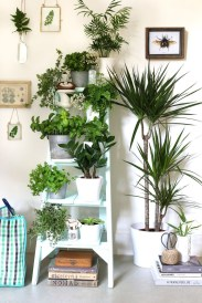 Magnificient Indoor Decorative Ideas With Plants 50
