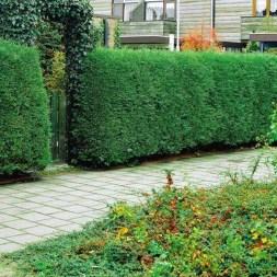 Unique Backyard Porch Design Ideas Ideas For Garden 12