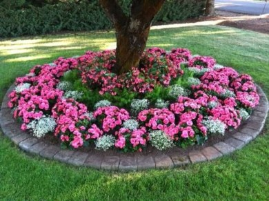 Adorable Flower Beds Ideas Around Trees To Beautify Your Yard 16