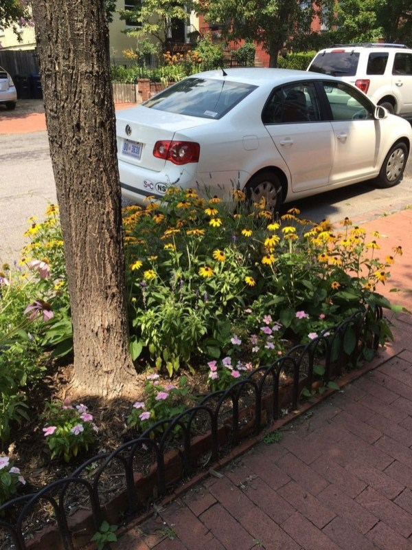 Adorable Flower Beds Ideas Around Trees To Beautify Your Yard 25