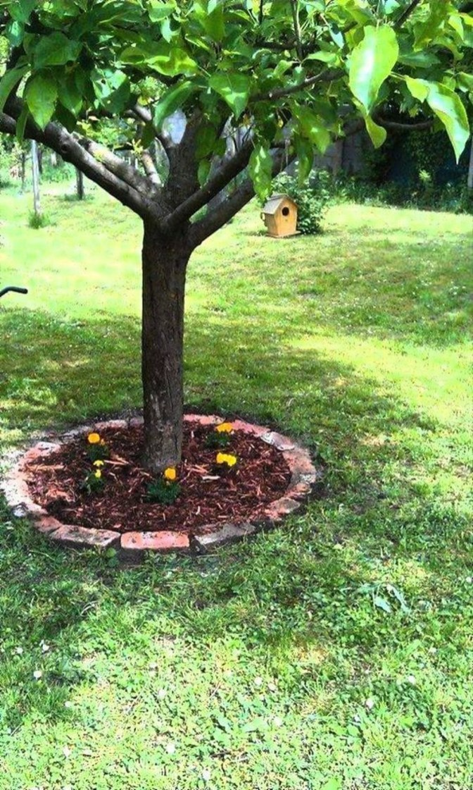 Adorable Flower Beds Ideas Around Trees To Beautify Your Yard 30