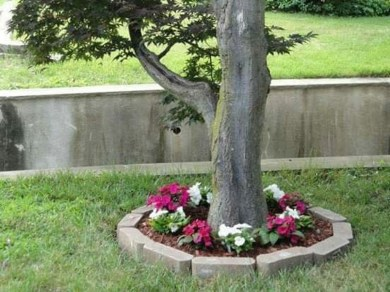 Adorable Flower Beds Ideas Around Trees To Beautify Your Yard 39