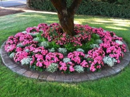 Adorable Flower Beds Ideas Around Trees To Beautify Your Yard 46