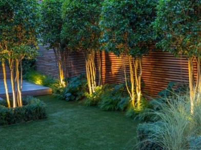 Elegant Backyard Patio Design Ideas For Your Garden 46