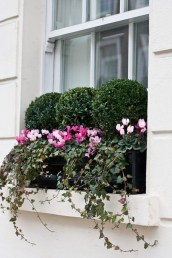 Lovely Window Design Ideas With Plants That Make Your Home Cozy 05