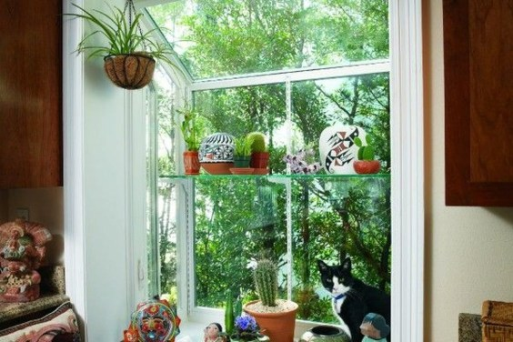 Lovely Window Design Ideas With Plants That Make Your Home Cozy 06