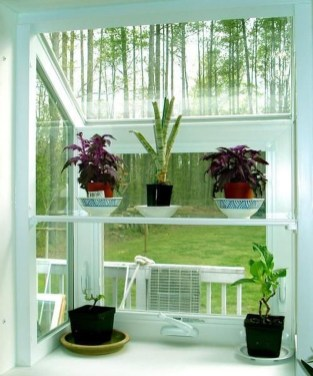 Lovely Window Design Ideas With Plants That Make Your Home Cozy 07