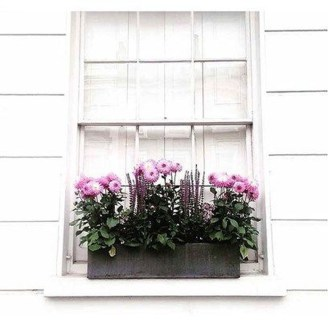 Lovely Window Design Ideas With Plants That Make Your Home Cozy 24