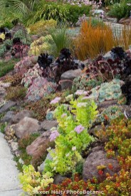 Cool Front Yard Rock Garden Ideas30