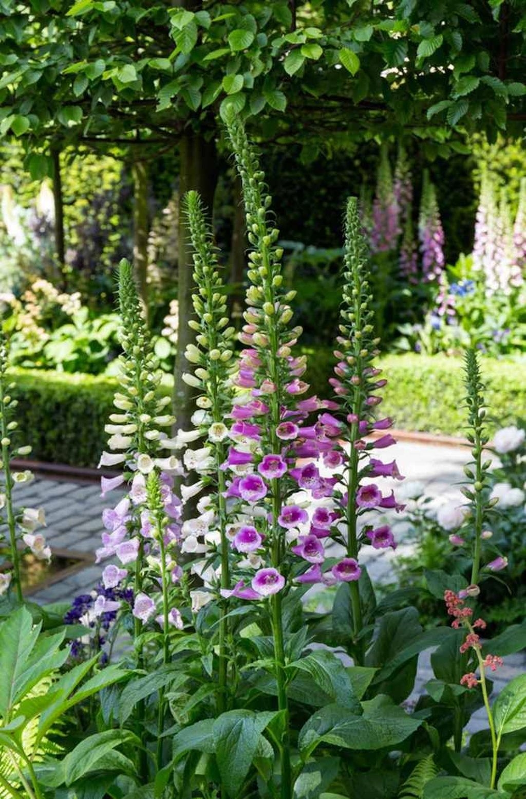 Awesome Cottage Garden Design Ideas For Your Dream House47