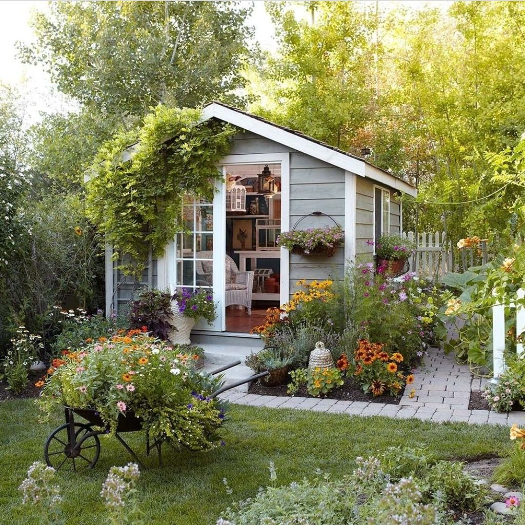 Awesome Shed Garden Plants Ideas20