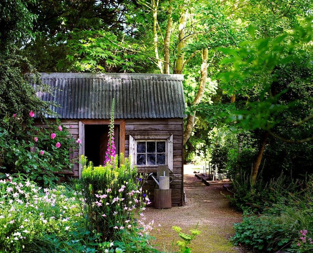 Awesome Shed Garden Plants Ideas26