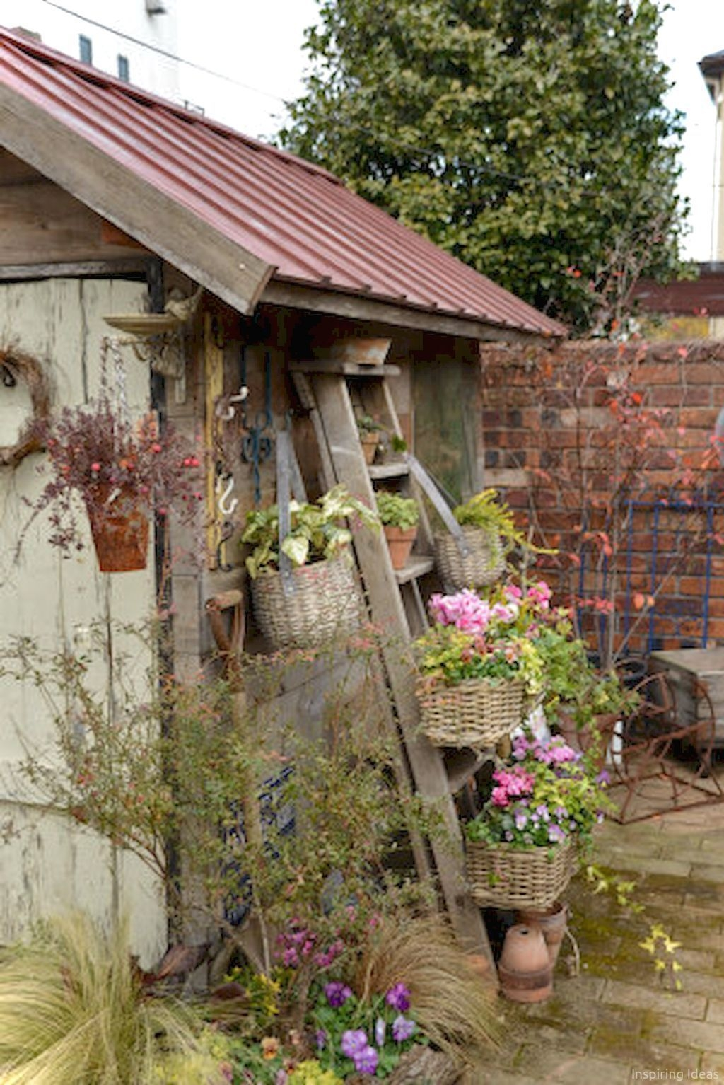 Awesome Shed Garden Plants Ideas32