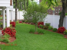 Smart Backyard Landscaping Ideas On A Budget32