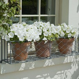 Wonderful Flower In Pots Ideas For Your Window01