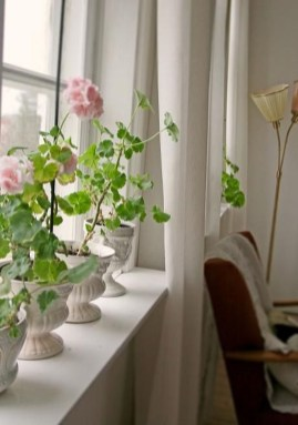 Wonderful Flower In Pots Ideas For Your Window17