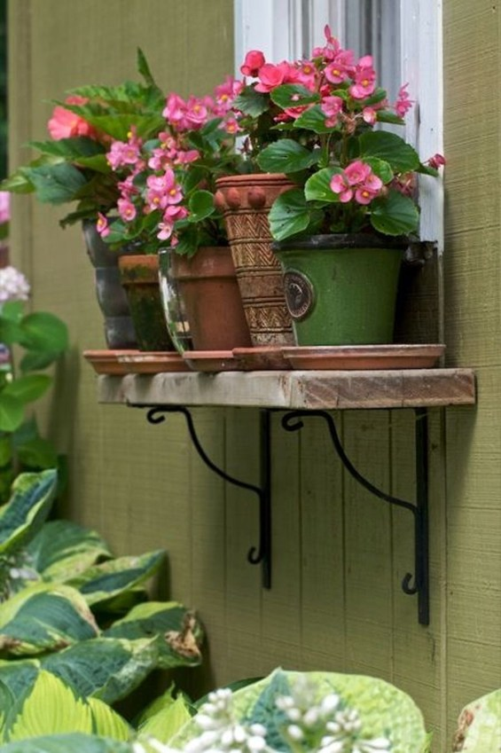 Wonderful Flower In Pots Ideas For Your Window19
