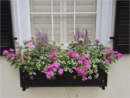 Wonderful Flower In Pots Ideas For Your Window21