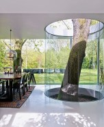 Awesome Tree Interior Design Ideas To Apply Asap04