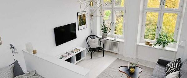 Awesome One Room Apartment Ideas