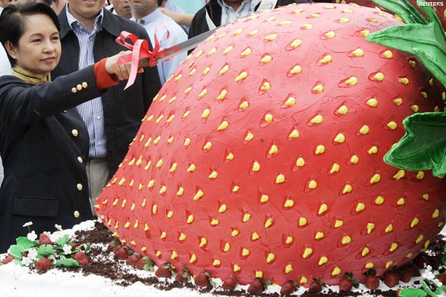 The Biggest Strawberry Cake